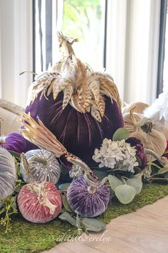 per Halloween 2019 da fare in vellutino o ciniglia, Hot Skwash Pumpkins Velvet Pumpkins, Fabric Pumpkins, Fall Pumpkins, Autumn Decorating, Pumpkin Decorating, Fall Decor, Pumpkin Crafts, Diy Pumpkin, Thanksgiving Diy