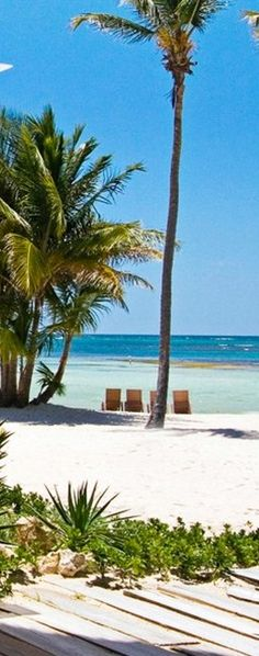 Stay 2+ nights and get 20% off at Tortuga Bay in the Dominican Republic. Summer never felt so good.