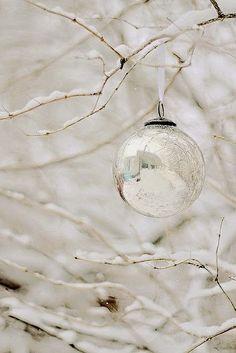 silver & snow
