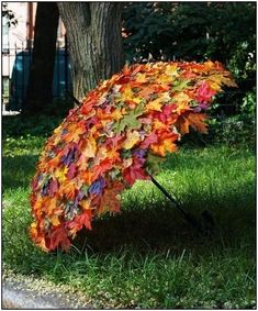 Garten Landschaftsbau Hinterhof Herbstlaub-Umbrella / Herbstlaub-Umbrella, made to measure, use at f Deco Floral, Easy Garden, Veg Garden, Upcycled Garden, Garden Tips, Indoor Garden, Garden Crafts, Spring Garden, Autumn Garden