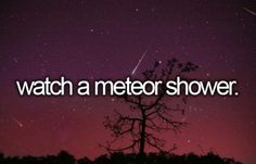 Watch a meteor shower - did this recently with Maggie & Brynna <3