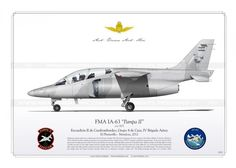 http://www.aviationgraphic.com/146-275-thickbox/ia-63-pampa-ii-805-argentina-cz-34.jpg