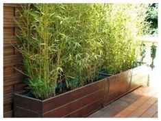 Jardinières pour Bambous - réalisation