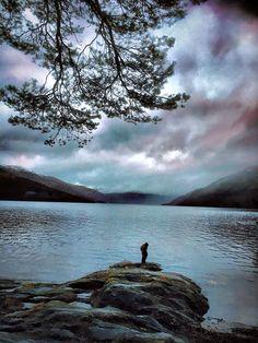 Rowardennan, Loch Lomond - by Lindsay Moran