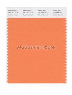 Pantone Smart 16-1343 TCX Color Swatch Card, Autumn Sunset Soft Autumn Color Palette, Warm Colors, Colours, Seasonal Color Analysis, Dark Shades, Season Colors, Pantone Color, Lipsticks, Orange Color
