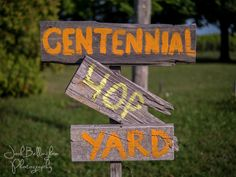 Centennial Hop Yard at Niagara Oast House Brewery in Canada. Niagara On The Lake Wedding details Engagement Photography, Wedding Photography, Garden In The Woods, Vineyard Wedding, Rustic Wood, Professional Photographer, Craft Beer, Brewery, Wedding Details