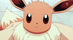 Pokemon Gifs Gotta Pin'em All!