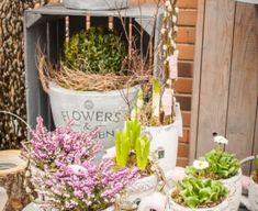 Pastel, Spring, Flowers, Plants, Cake, Plant, Royal Icing Flowers, Flower, Crayon Art