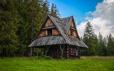 Jak se bydlí na samotě u lesa v různých koutech světa?