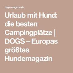 Urlaub mit Hund: die besten Campingplätze | DOGS – Europas größtes Hundemagazin