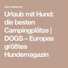 Urlaub mit Hund: die besten Campingplätze | DOGS – Europas größtes Hundemagazin Dog Travel, Travel Tips, Germany Travel, Camping Hacks, Animals And Pets, Food And Drink, Dogs, Secret Diary, Caravan