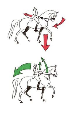 """Abbildung 3: Unterschiedliche Auswirkungen von halber Parade (oben) und """"Demi-arrêt"""" (unten) ."""