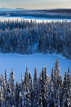 Winter landscape. - Upper Fraser in British Columbia, Canada - by Robert Downie