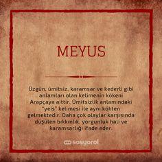 Eski Türkçe Kelimeler: Unutulmaya Yüz Tutmuş 52 Kelime ve Anlamları Tableware, Dinnerware, Dishes, Serveware