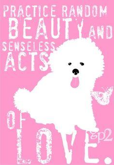 c4a933ab650bc3 Bichon Frise Dog Art Print Wall Decor Perfect Dog Print for a Nursery or  Girls Bedroom