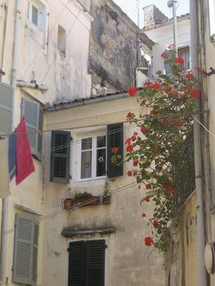 Corfu Greece, Vacations, Explore, Places, Corfu, Holidays, Vacation, Lugares, Exploring