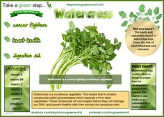 ☛ Do you eat Watercress?  It is part of the Cruciferous vegetables.  There are so many nutrients in cruciferous vegetables, we can learn our alphabet with them.   For all you need to know about   ✒ Share | Like | Re-pin | Comment