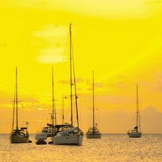 See Saint Lucia with Air Canada Vacations! Stay on the best Saint Lucia beaches ✔ Find last-minute deals on Saint Lucia all-inclusive resorts ✔ Visit Saint Lucia island now. Honeymoon Getaways, Vacation Resorts, Vacation Spots, Vacation Rentals, Vacations, Best Caribbean Destinations, Romantic Honeymoon, Vacation Packages, Sandy Beaches