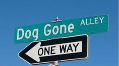 Where the #Dog Go? #Woodland #StreetSign