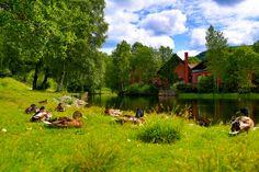 Relaxing summer spot in Oslo