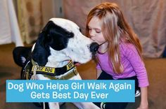This is by far the best love story we have ever seen <3 https://www.facebook.com/BarkPost/videos/817126581749555/