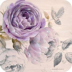 84662871_1331564604_Ethereal_Roses_3_c.jpg (413×413)