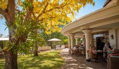 Accommodation in Victoria Falls   Ilala Lodge Hotel