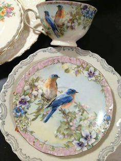 English Robin, tea cup and saucer, afternoon tea
