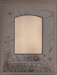 Unusual Page from Victorian Album, Spiders & Flowers, Cabinet Photos from tomjudy on Ruby Lane