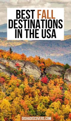 USA Fall Trips: 12 Of The Best Autumn Trips for Fall Foliage | fall trips USA | USA fall trips | USA fall travel | USA fall destinations | USA fall vacations | USA fall road trip | fall travel destinations USA | fall honeymoon destinations USA | fall USA | fall travel USA | fall foliage USA | best fall foliage USA | fall getaways | fall getaways u.s. states | autumn in USA | autumn USA national parks | autumn in the USA Usa Travel Guide, Asia Travel, Travel Usa, Travel Tips, Travel Destinations, Budget Travel, Travel Guides, Beautiful Places To Travel, Cool Places To Visit