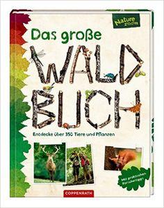 Das große Waldbuch: Entdecke über 350 Tiere und Pflanzen: Amazon.de: Bärbel Oftring, Holger Haag, Yousun Koh, Manfred Rohrbeck, Anne Ebert, Christine Henkel: Bücher