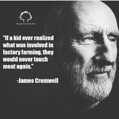 if children knew the truth about factory farming Animal Consciousness, Proverbs 12 10, James Cromwell, Celebrity Quotes, Factory Farming, Why Vegan, Life Transitions, Stop Animal Cruelty, Vegan Animals