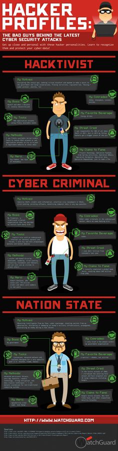 Hacker Profiles – The Bad Guys Of Online Security - Hackers, the villains of our age. These are the hacker profiles that make life on the Internet such a security risk. These are the things that drive them. - #infographic
