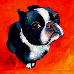 Funny Boston Terrier Dog Art Painting Signed Photo Print by Svetlana Novikova Pitbull Terrier, Terrier Puppies, Terrier Mix, Boston Terrier Kunst, Boston Terrier Love, Boston Terriers, Dachshund Funny, Boston Art, Photo Print