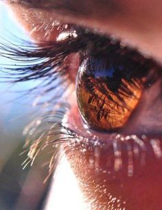 The color of the eye seems to change in the sunlight. The shadow of the eyelashes creates dark streaks of brown.