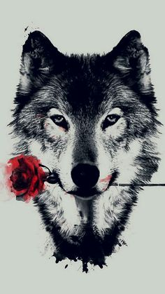 'The Wolf With a Rose' iPhone Case by Shaneguru Wolf Wallpaper, Iphone Wallpaper, Werewolf Stories, Wolf Book, Wolf Tattoos, Non Fiction, Wattpad, Abstract, Drawings