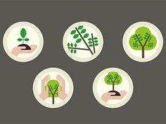 Tree evolution icons