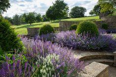 Heavenly Garden | Lloyd Brunt