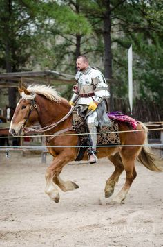 Charlie Andrews on the Belgian gelding jousting horse Jaegermeister, mid-faire competitive jousting tournament, Sherwood Forest Faire 2015  (photo by GRHook Photo)