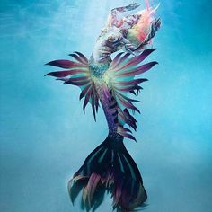 FinfolkProductions dream of being a real mermaid? For 800 bucks you can transform! You can actually swim in this realistic mermaid tail!