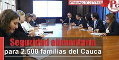 Con una inversión de US$3 millones, el ministerio de agricultura en alianza con el Programa de las Naciones Unidas para el Desarrollo (PNUD) y la Gobernación del Cauca, pusieron en marcha un programa para seguridad alimentaria de 2.500 familias.  [https://plus.google.com/u/0/b/117969947997633486620/+ProclamadelcaucaDiario/posts]