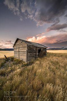 Warm Fields by AdrianMurray via http://ift.tt/2bBIKeZ
