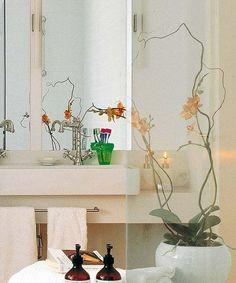 Exklusive Ideen Für Dekoration Mit Orchideen - Weiße Farben ... Exklusive Deko Fur Wohnzimmer