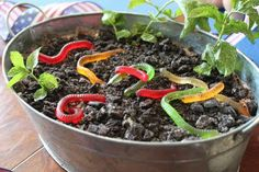 Gummy worms to go with the animal theme for Go Diego Go birthday party. ~Southern as Biscuits: Gummy Worm Dirt Cake