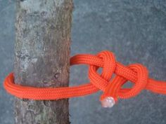 Essential Knots: How to Tie the 20 Knots You Need to Know
