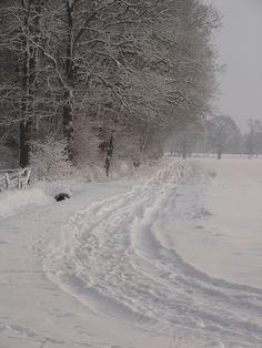 Verschneiter Feldweg bei Lutten (Niedersachsen)