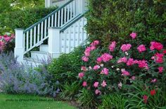 Landscaping Around Your Porch :: Hometalk Roses and lavender are classic cottage garden flowers.