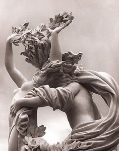 Apollo and Daphne - Gianlorenzo Bernini, Borghese Gallery, Rome See more great art at http://www.artexperiencenyc.com/ ...
