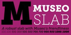 Check out the Museo Slab font at Fontspring. It is a perfect match for Museo Sans.