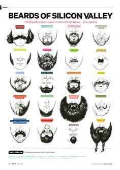 Beard of Silicon Valley - Kelsey Dake